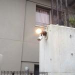 センサーライト5